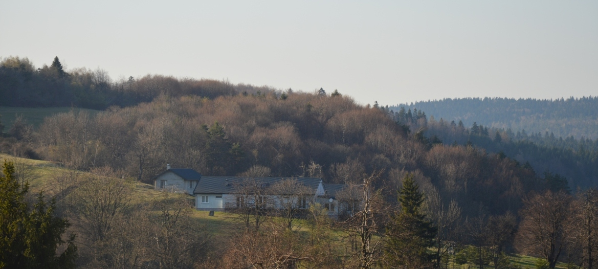 Siedlisko Radocyna